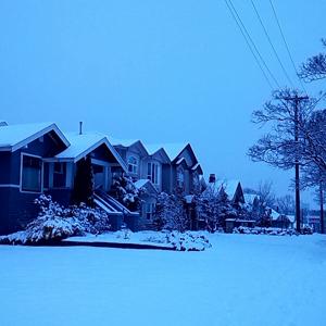 今はまだ雪景色。春が待ち遠しい。