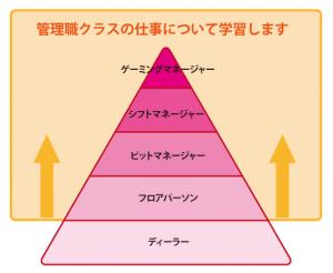 ピラミッド20171101